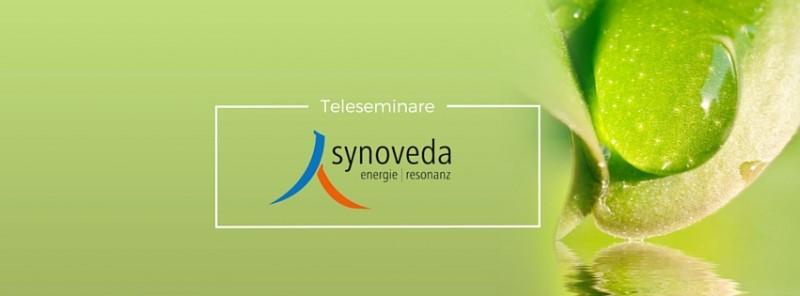 Synoveda - Teleseminar