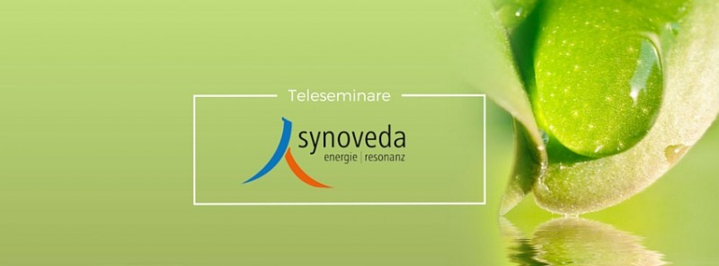 Synoveda - TELESEMINAR Stress – Depression – Burn-out