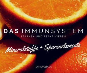 Das Immunsystem stärken und reaktivieren