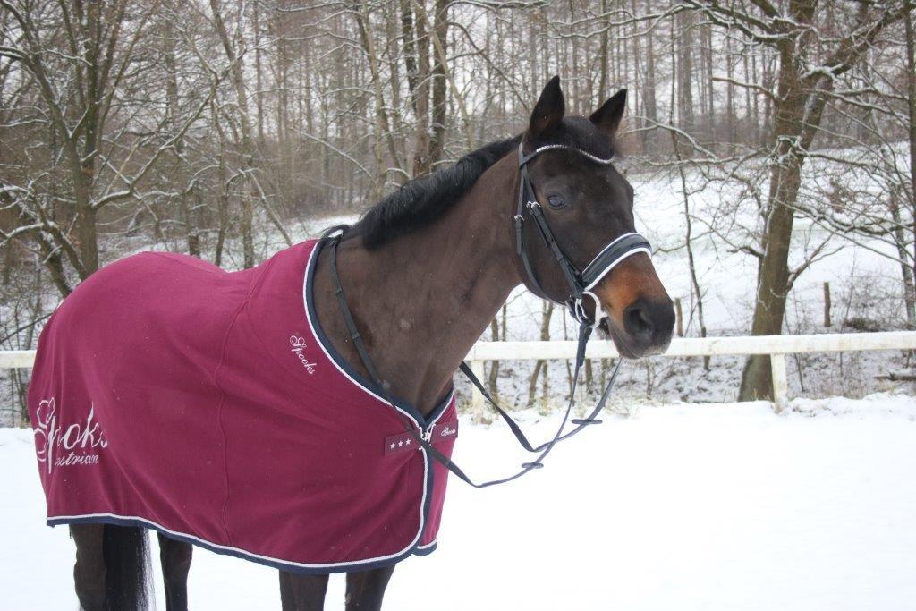 Mineralstoffe und Spurenelemente für Pferde